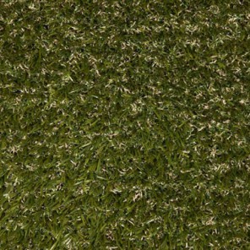 Gazon synthétique herbe haute Camps David